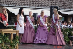 2005 - Heidefest