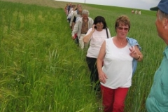 2005 - Juni - Wanderung nach Schwarzenbach